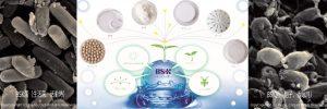 BSK菌の製造販売元株式会社九宝のトップページ